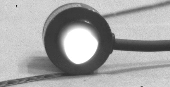紫外光の撮影(カバーガラスを取り外したカメラ)
